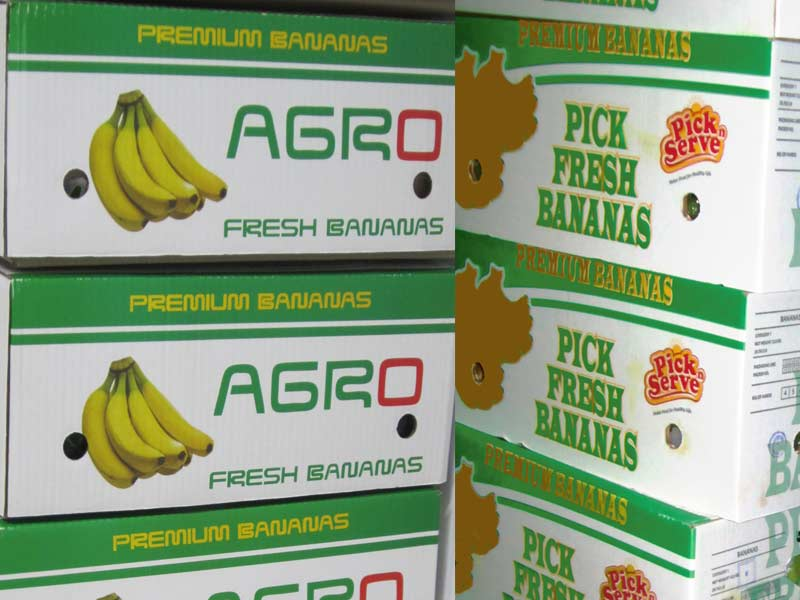 AGRO Banana Box Pick Fresh Banana fa