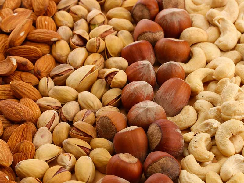 iran dried nuts agro export