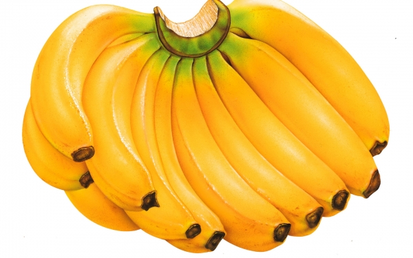 Banana Import - AGRO Products